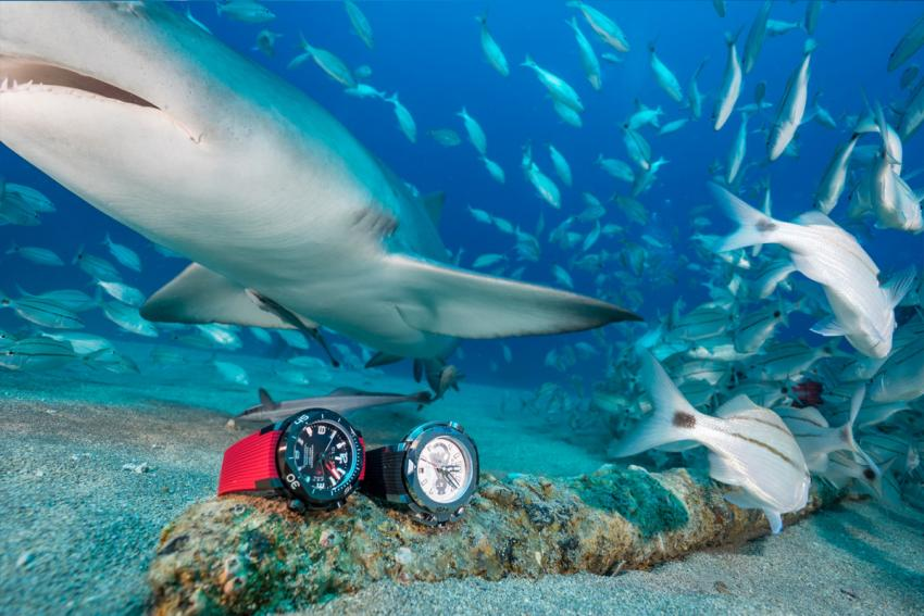 Clerc Hydroscaph with a Hydroscaph Chronograph and a friendly shark